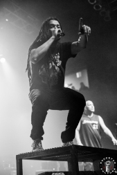 nonpoint11